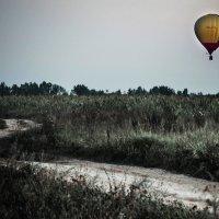 Полёт на шаре. :: Olga Kramoreva