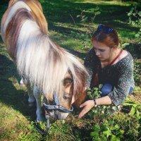 Люблю животных! :: Viktory Fedorova
