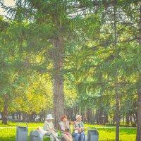 бабушки сидят в парке под ёлкой :: Света Кондрашова