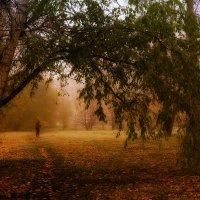 Осень в парке. :: Виктор Иванович