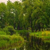 Зеленые берега :: vladimir Bormotov