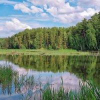 Маленькая речка :: Дмитрий Конев