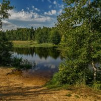 Август озеро в лесу 2 :: Андрей Дворников