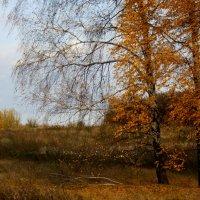 Осенняя  акварель. :: Валерия  Полещикова
