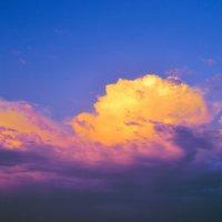 Вечер перед дождём :: Виктор Шандыбин
