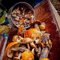 Лиинахамари- рай для грибников. :: Марина Захарина