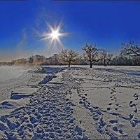 Зимнее Солнце над Андреевским лугом (версия) :: Дубовцев Евгений