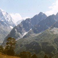 Кавказ :: imants_leopolds žīgurs