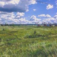 Летний пейзаж :: Вячеслав Баширов