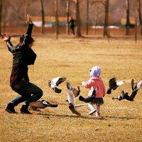 В каждой женщине сокрыта птица :: Екатерина Торганская