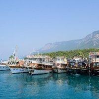 Turkey :: Анна Петрова