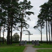 Немецкое военное мемориальное кладбище в Тойла. Монумент :: Елена Павлова (Смолова)