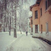 Зимняя прогулка :: Вячеслав Баширов