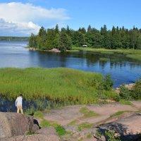 Парк Монрепо расположен близ Выборга, на побережье бухты Защитная Выборгского залива. :: Anna Gornostayeva