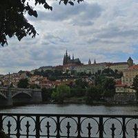 Прага над Влтавой :: Елена