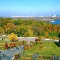 Осень в Киеве :: Наталия Каминская