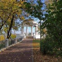 Вот и осень наступила :: Ольга Тумбаева