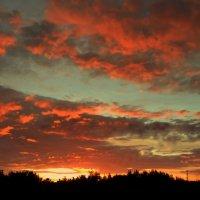 Небо перед заморозками. :: Мила Бовкун