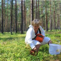 Еще ягодку сорву и пойду снимать красоты лесные.... :: Tatiana Markova