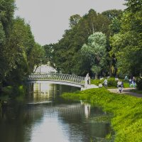 таврический парк :: Александр Кузин