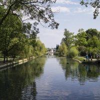 Абхазия, Новый Афон, фото 02 :: Наталья Понтус