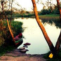 озеро на закате :: Ольга