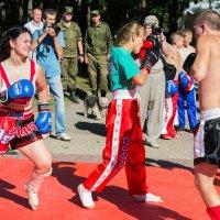 День Валуйского района в Белгороде :: Petrovich