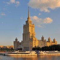 гостиница Украина :: Волк