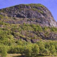 Горные склоны Норвегии :: Александр Рябчиков
