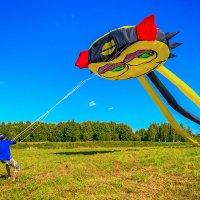 """Фестиваль воздушных змеев """"Пёстрое небо"""" :: Борис Гольдберг"""