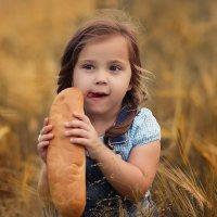 Хлебные поля :: Ольга Дворянкина
