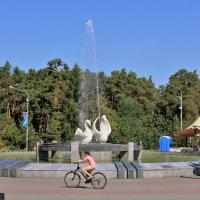 Воскресенье в парке :: Сергей Кухаренко