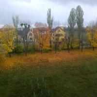 Осень из окна :: Lera Yurievna