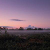 Туман на закате :: Yuri Mekhonoshin