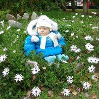 Одуванчик среди цветочков. :: Оля Богданович