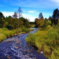 река  в КАРЕЛИИ :: Ольга Cоломатина