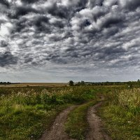 Дорога в поле :: Sergey Kuznetcov