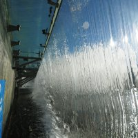 А купаться запрещено..!!)) :: tipchik