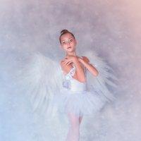 Одэтта. Белый лебедь. :: Ольга Егорова