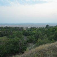На границе Молдавии и Румынии :: Дмитрий Крыжановский