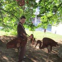 Кормление птиц :: Дмитрий Никитин