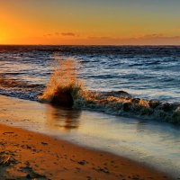 И снова о заливе :: Валентина Папилова