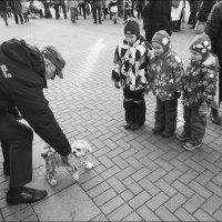 Три танкиста и собака :: Василий Чекорин