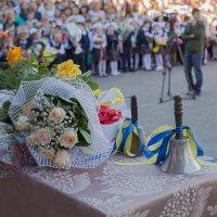 1 сентября :: Елена Ахромеева