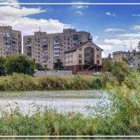 Краснодар. Озеро :: Александр