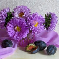 Этюд с астрами :: Татьяна Смоляниченко