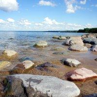 Вид побережья :: Елена Павлова (Смолова)
