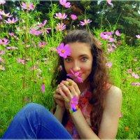 В осенних цветниках :: Андрей Заломленков