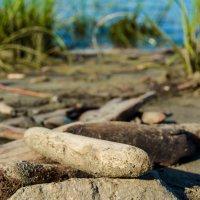 Пляжные палочки :: Света Кондрашова