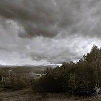 Перед дождём :: Дмитрий Сажин